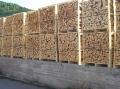 Sawn beech firewood 33 cm
